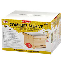 10-Frame Complete Beehive