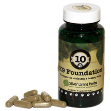 10 K9 Foundation Body Support for Dogs