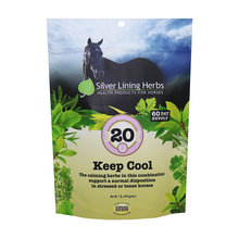 20 Keep Cool Stress Support for Horses