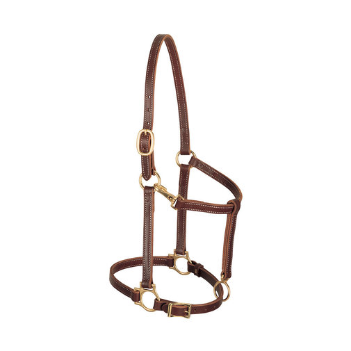 "View larger image of 3/4"" Track Halter"