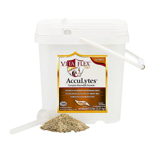 View larger image of AccuLytes Electrolyte Supplement for Horses