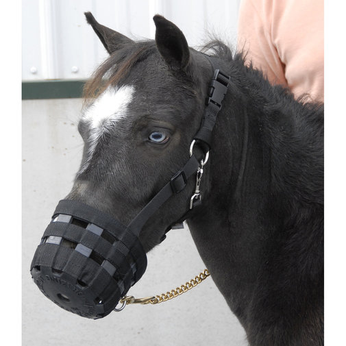 View larger image of Best Friend Deluxe Grazing Muzzle