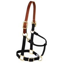 Nylon Breakaway Halter for Horses