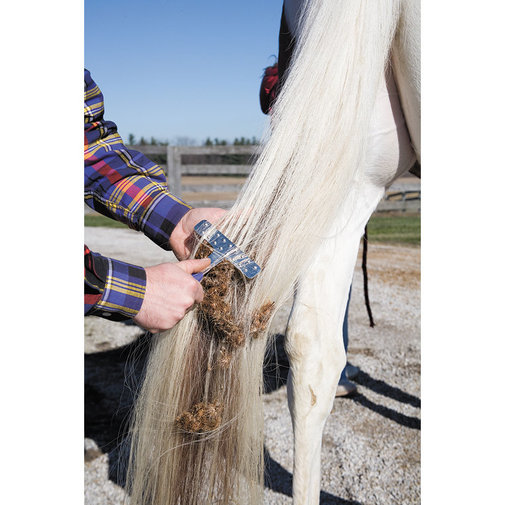 View larger image of Burr Out Grooming Tool