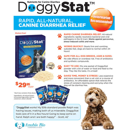 View larger image of DoggyStat Canine Diarrhea Relief