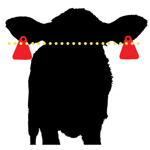 View larger image of Double Barrel VP Insecticide Ear Tags