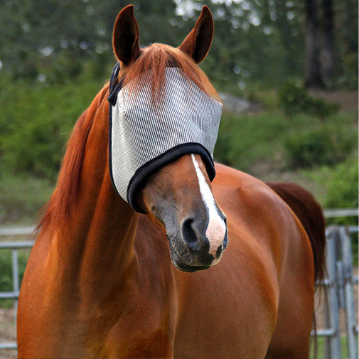 View larger image of DuraMask Equine Fly Mask Without Ears