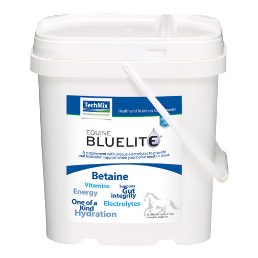 View larger image of Equine BlueLite