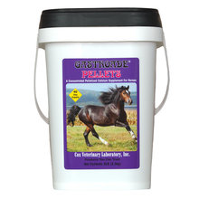 Gastroade Calcium Supplement for Horses
