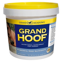 Grand Hoof Nutritional Supplement for Horses
