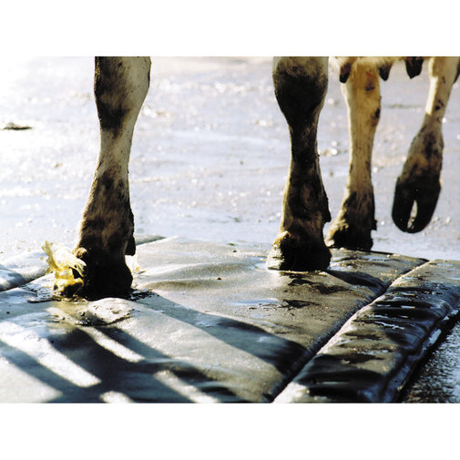 View larger image of Hoof Treatment Mat