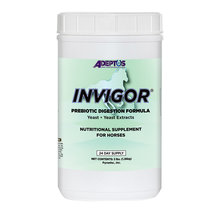Invigor Yeast and Yeast Extract Prebiotic Digestion Formula for Horses