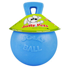 Jolly Ball for Ponies and Dogs
