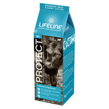 LIFELINE Protect Colostrum Supplement for Calves