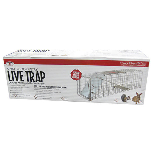 View larger image of Live Animal Trap