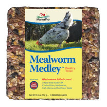 Mealworm Medley Poultry Treat