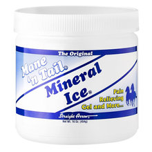Mineral Ice Pain Relieving Gel for Horses