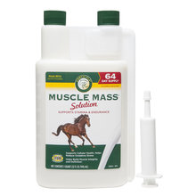 Muscle Mass Horse Supplement Solution