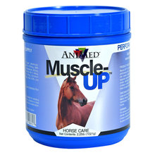 Muscle-Up Supplement for Horses