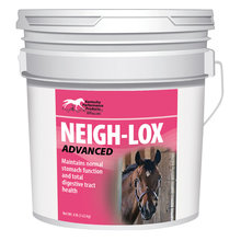 Neigh-Lox Advanced Digestive Health Tract Support for Horses