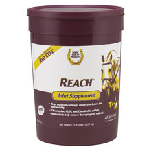 Reach Joint Supplement
