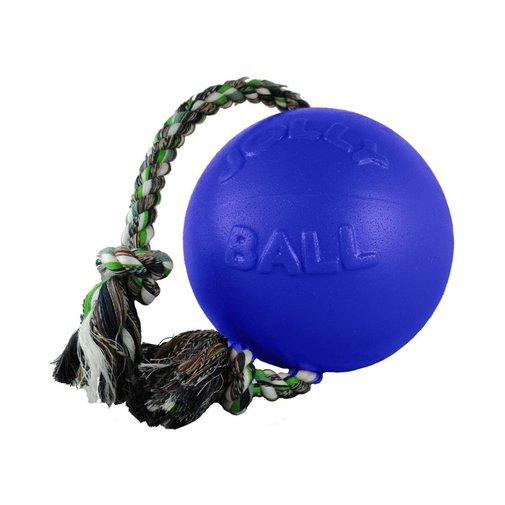View larger image of Romp-N-Roll Dog Toy
