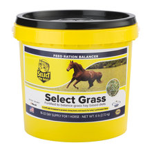 Select the Best Select Grass Horse Feed Ration Balancer
