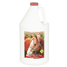 Thi-A-Tone B1 Supplement for Horses