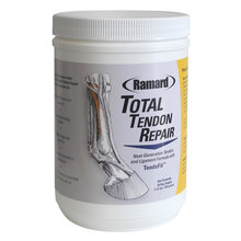 Total Tendon Repair for Horses
