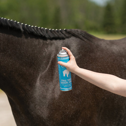 View larger image of Ultra Final Touch Shining Spray for Horses
