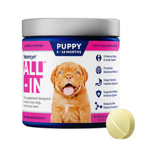 Vetericyn ALL-IN Dog Supplement
