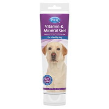 Vitamin & Mineral Gel Supplement for Dogs