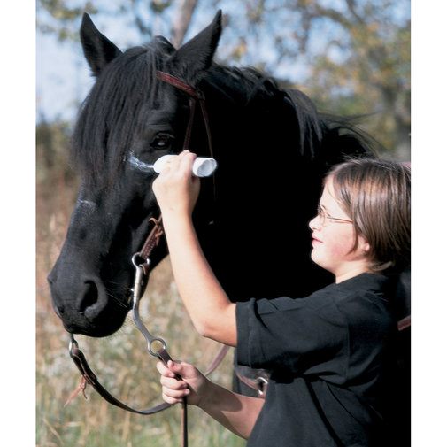 View larger image of War Paint Insecticidal Paste for Horses