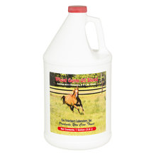 Wheat Germ Oil Blend for Horses